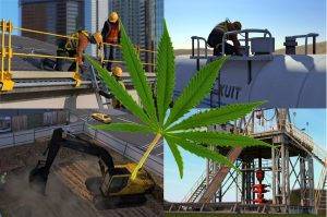 SafetyVantage Marijuana in the Workplace Awareness Course