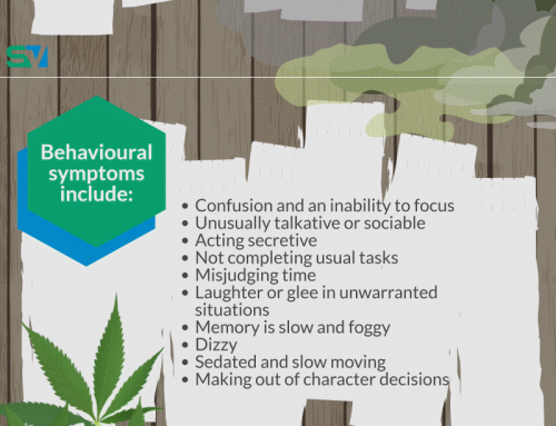 InfoGraphic: Recognizing signs of cannabis use