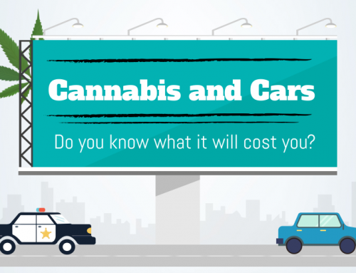 InfoGraphic: Cannabis and Cars