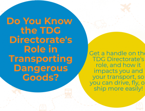 InfoGraphic: TDG Directorate's Role